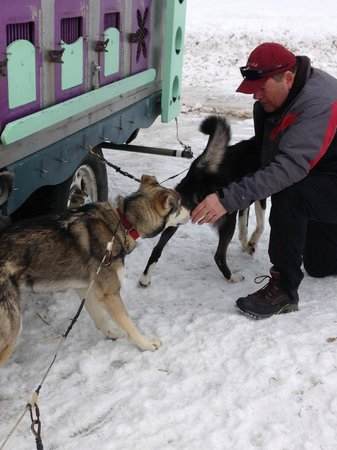Valley Snow Dogz: They were a little shy with Mike