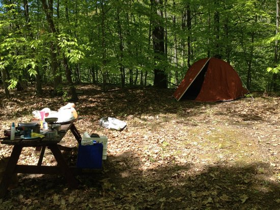 Brush Creek Campground: Campsite
