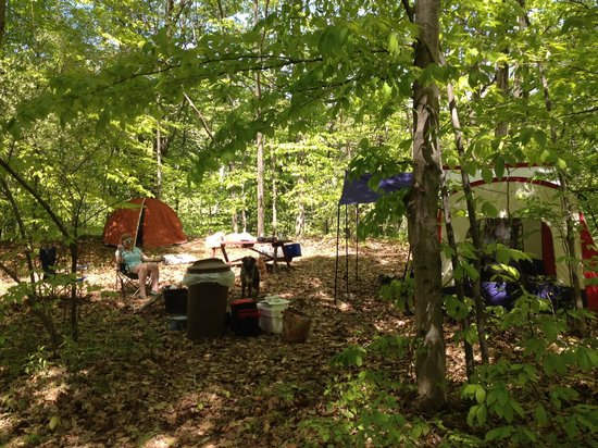 Brush Creek Campground: Campsite 2
