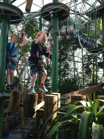 Cairns ZOOM and Wildlife Dome: The ropes course