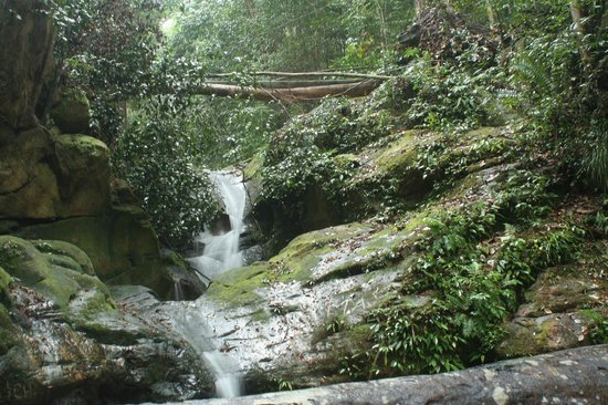 The Village House: Waterfall in Mount Santubong