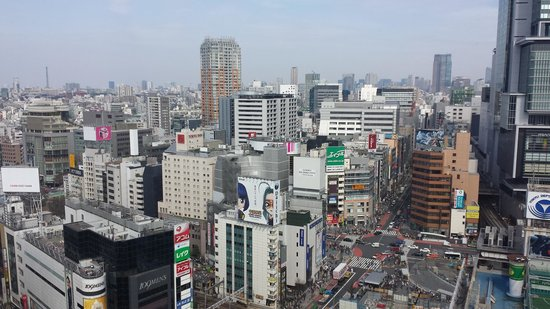 Shibuya Excel Hotel Tokyu: view from our window..