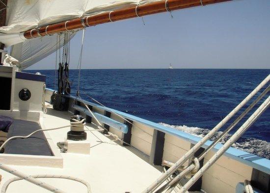 Jus' Sail : Great Day at Sea