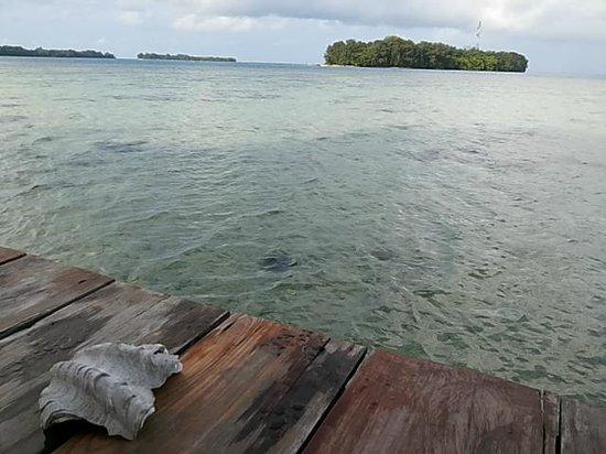 Pulau Macan Tiger Islands Village & Eco Resort : Waterfront hut