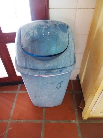 Blenchi: waste basket in the kitchen