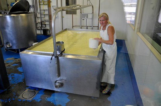 Jumpin' Good Goat Dairy : Owner Dawn starting to make a batch of goats' cheese fetta. Yum!