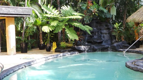 Aqua Bamboo Waikiki: Pool Area