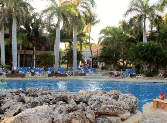 La piscine anim e et les alentours picture of ifa villas for Alentour piscine