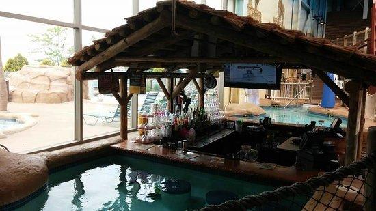 Kalahari Resorts & Conventions : Adult swim up bar