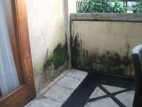 Karma Royal Jimbaran: Bit of mildew for clean up