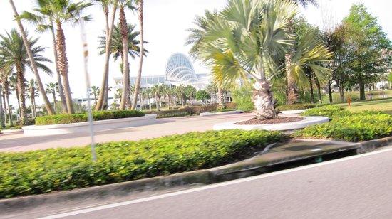 La Quinta Inn Orlando Airport West: alrededor hotel