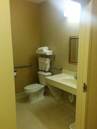 Country Inn & Suites By Carlson, Washington Dulles International Airport: Bathroom