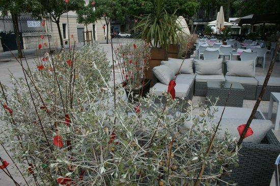 Le Danieli : Terrasse lounge sur la Place d'Assas