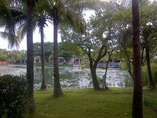 Pattara Resort & Spa: room with a view