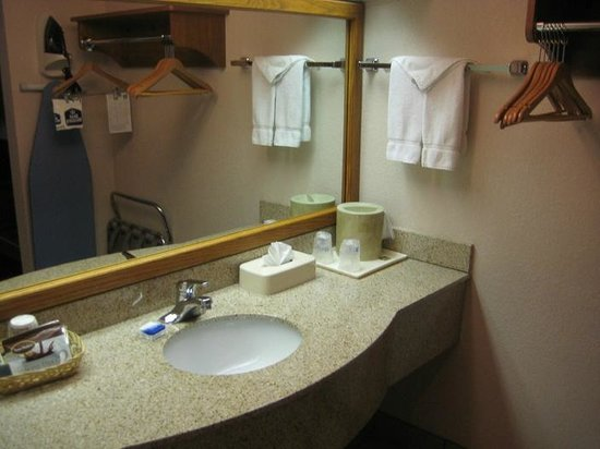 Best Western Plus Saddleback Inn & Conference Center : Adequate counter space in vanity area.