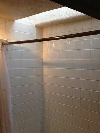 Las Palomas Inn Santa Fe: Shower with skylight