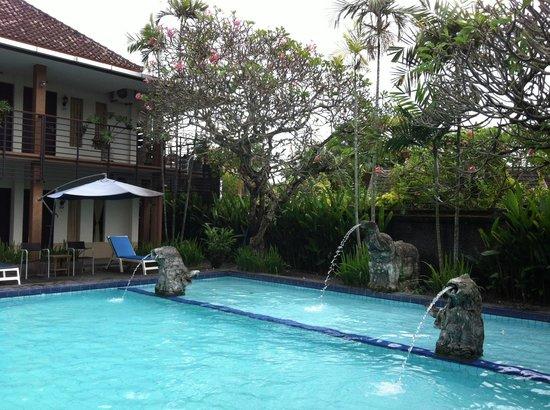 Sanur Agung Hotel: Бассейн