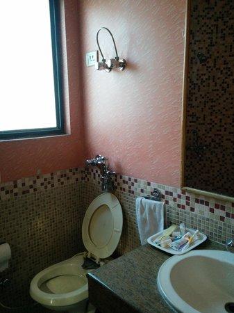 Hotel Madonna: washroom