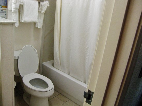 Quality Inn & Suites Biltmore East: toilet and shower/bath
