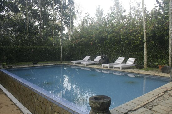 Shalimar Spice Garden - An Amritara Private Hideaway: The large swimming pool