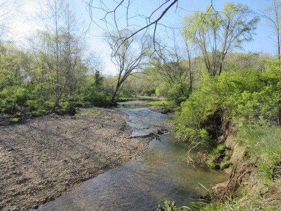 Castlewood State Park: pretty