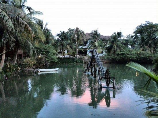 Baan Thai House : Het meer