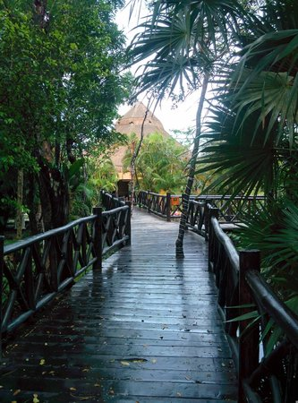 Iberostar Cozumel: Bridge connecting lobby to villa grounds