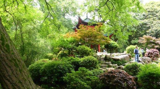 Mount Yuelu : Pavilion