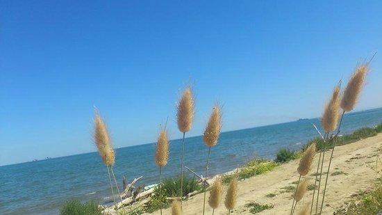 Bella Romagna: Strandidylle bei langen Spaziergängen