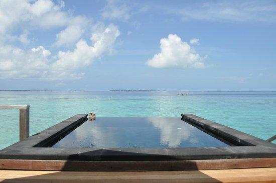 JA Manafaru : Personal infinity pool on the deck