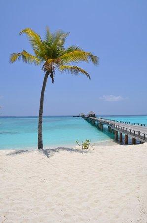 JA Manafaru: One of the beaches - no photoshop on that colour!
