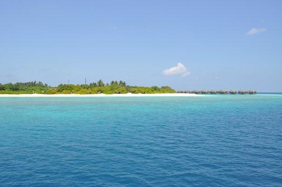 JA Manafaru: The island from the boat