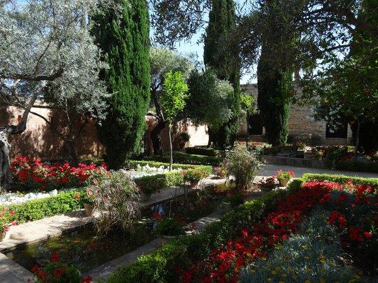 Alcázar de Jerez de la Frontera: Garden
