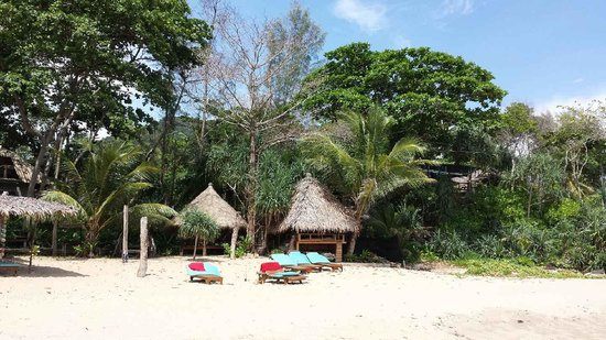 Narima Bungalow Resort : Beach
