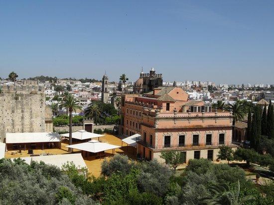 Alcázar de Jerez de la Frontera: View