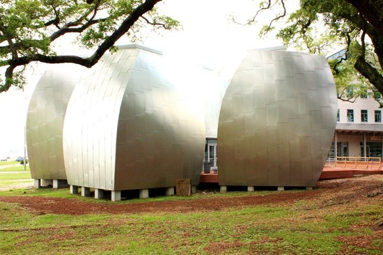 Ohr-O'Keefe Museum of Art : Pods