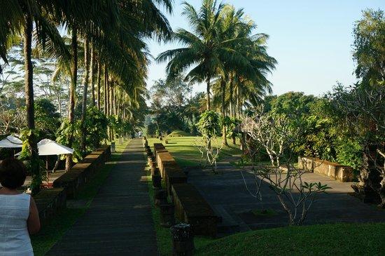 Maya Ubud Resort & Spa: hoteltuin