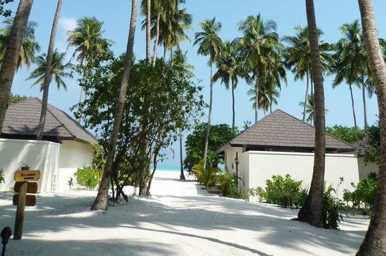 Atmosphere Kanifushi Maldives: Husene