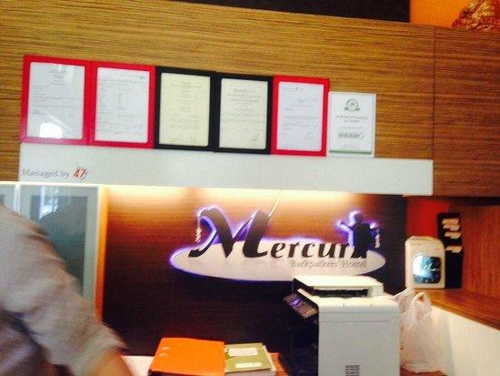 Mercury Backpackers' Hostel : lobby