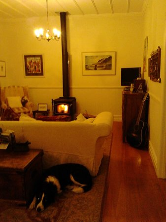 Heartsong Retreat : Cosy fireplace, Sammy the resident dog visiting