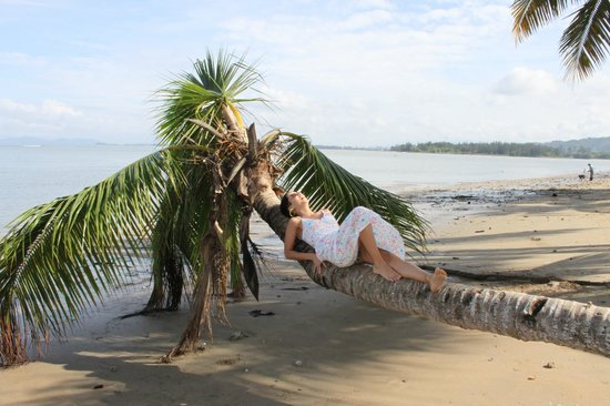 Seaside Travellers Inn: beach