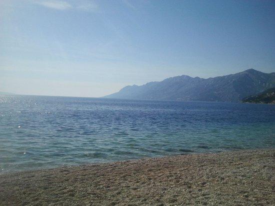 Bluesun Hotel Soline: beach
