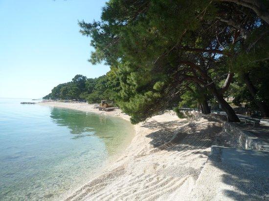 Bluesun Hotel Soline: works on beach