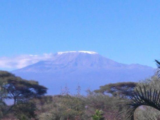 Kibo Safari Camp: Mt. Kilimanjaro the view from my tent
