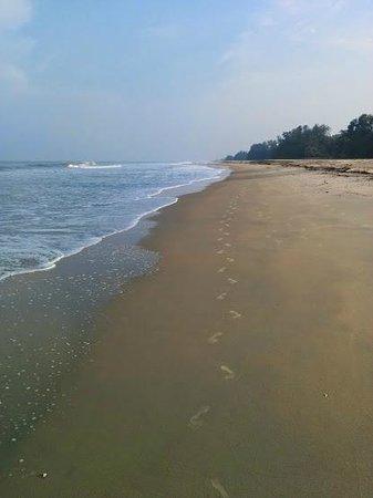 Dona Sylvia Beach Resort: Beach