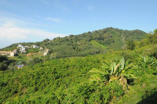 The View Rawada Resort & Spa: ภูเขา