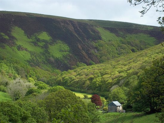 Shelley's: Stunning Exmoor scenery just a couple of miles from Lynmouth