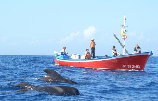 Oceano Whale Watching La Gomera