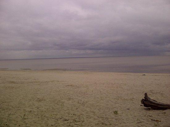 Villa Andropoff: sea is near the hotel