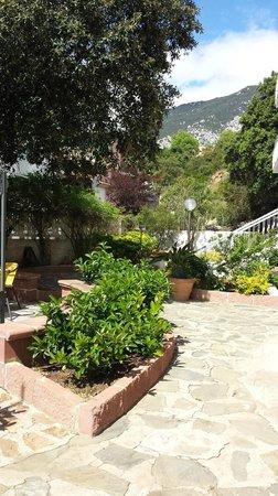 Hotel Nettuno : just one more nice view....